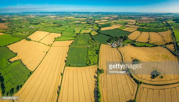 Vue aérienne de champs de culture or vert pâturage sur le patchwork de terres agricoles