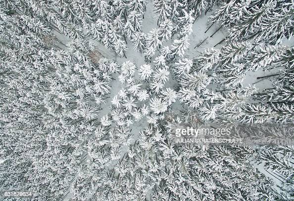 TOPSHOT Aerial view taken on January 17 2017 with a drone shows a snowcovered forest near Schulenburg im Oberharz in the Harz region central Germany...