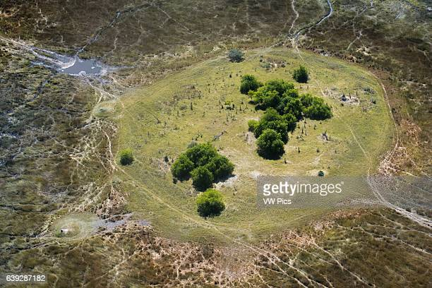 Aerial views from Camp Savute Elephant Camp by Orient Express in Botswna in Chobe National Park and Camp Camp Eagle Island Camp by Orient...