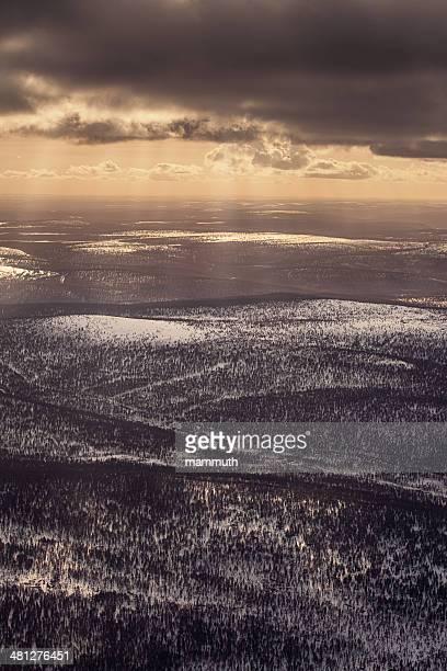aeriel Ansicht von unendlichen Pinienwälder in Finnland
