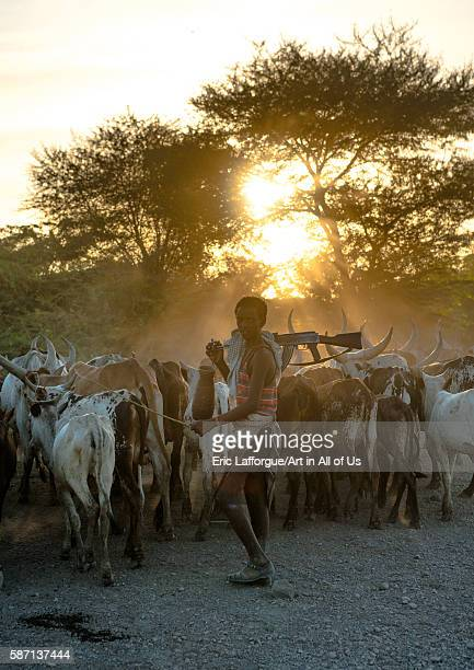 Afar tribe herder with a kalshnikov looking for his cows afar region afambo Ethiopia on March 1 2016 in Afambo Ethiopia