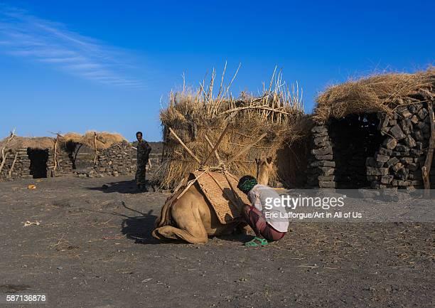 Afar tribe men loading a camel in front of a hut before climbing to erta ale afar region erta ale Ethiopia on February 27 2016 in Erta Ale Ethiopia