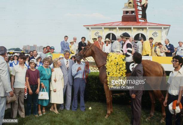 BALTIMORE Affirmed and his jockey Steve Cauthen relax in the winners' circle after winning the 1978 Preakness Stakes in Baltimore Maryland