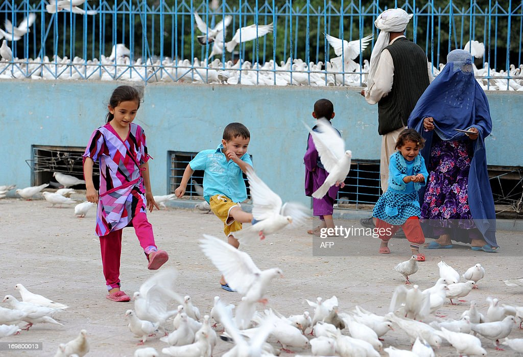 Afghan children play with pigeons during Children's Day in Mazar-i Sharif on June 1, 2013. Tens of thousands of children in Afghanistan, driven by poverty, work on the streets of the war-torn country's cities and often fall prey to Taliban bombings and other violence, as well as abuse. AFP PHOTO/ Farshad USYAN
