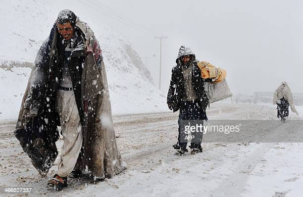 Afghan drug addicts walk during snowfall on the outskirts of Herat on February 1 2014 As winter sets in across Central Asia many Afghans struggle to...