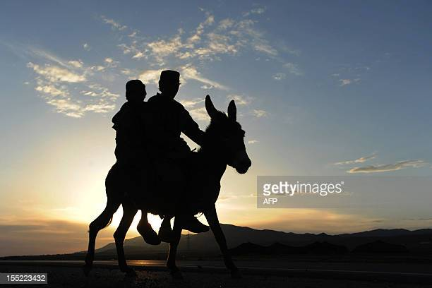 Afghan Kuchi nomads ride a donkey near Herat city on April 20 2012 The Kuchi people of Afghanistan are nomads who move to the northeast in the spring...