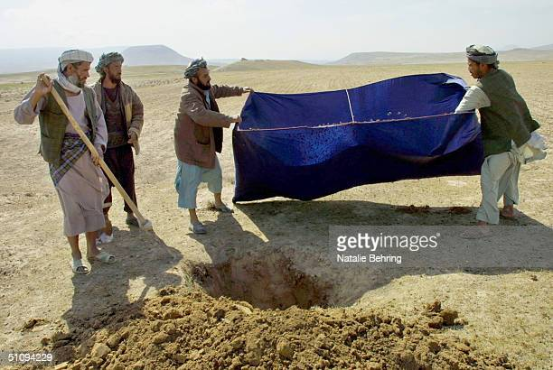 Afghan Men Dump Hundreds Of Locusts Collected In A Nylon Net Into A Freshly Dug Hole Where They Will Be Promptly Buried In An Infested Field May 4...