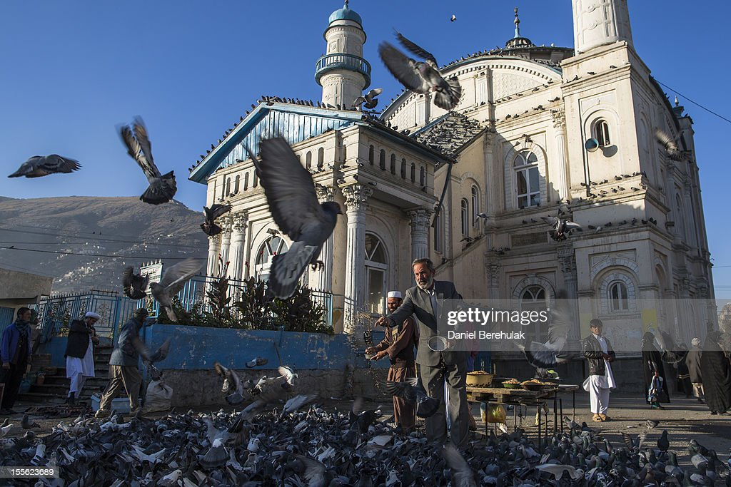 Afghan men feed pigeons with grain, purchased from a street vendor, in front of the Shah-e Doh Shamshira shrine on November 6, 2012 in Kabul, Afghanistan.