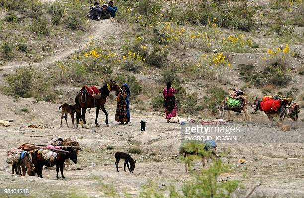 Afghan nomad families tend to their horses and donkeys near Ibrahim Khel village of Khost province on April 11 2010 The United States and NATO deploy...
