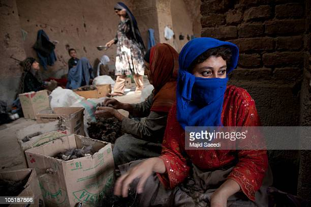 Afghan women sort wool in a fur and wool factory to produce coats jackets hats and other garments for the European and North American markets on...