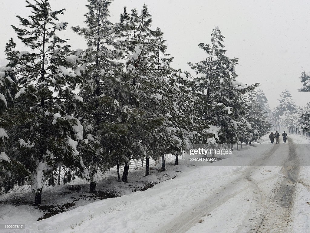 Afghan youths walk past snow-covered trees in Kabul on February 4, 2013. As winter sets in across Central Asia, many Afghans struggle to provide adequate food and shelter for their families. AFP PHOTO/ SHAH Marai