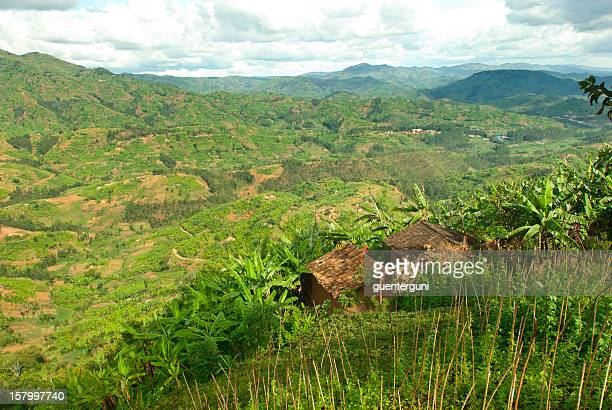 Afican fields - green farmland in the heart of Africa