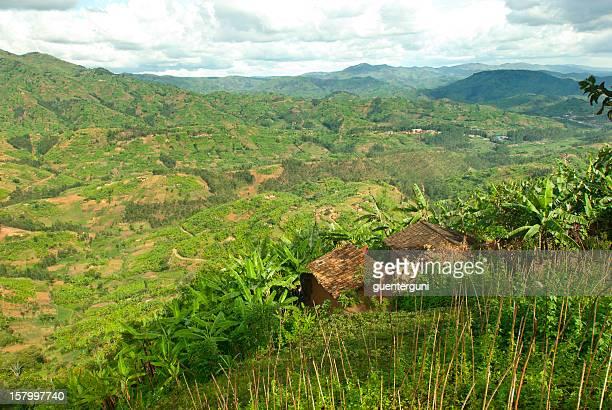 Afican フィールドグリーンのファームランドの中心に位置し、アフリカ