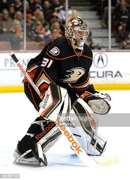 aFrederik Andersen of the Anaheim Ducks in goal against the St Louis Blues at Honda Center on January 2 2015 in Anaheim California