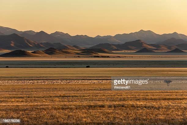 Africa, Namibia, Sunrise at Tiras Mountains, Namib Desert