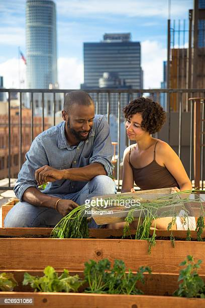 African American Couple in Urban Garden