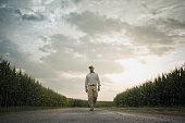 African American farmer walking on road through crops