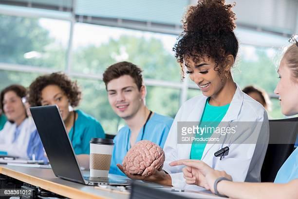 African American female medical student studies human brain model