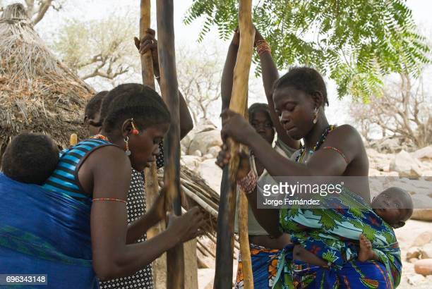 African bedik women carrying children pounding peanuts the traditional way