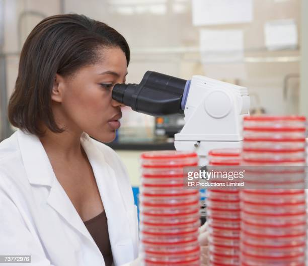 African female scientist with Petri dishes and microscope