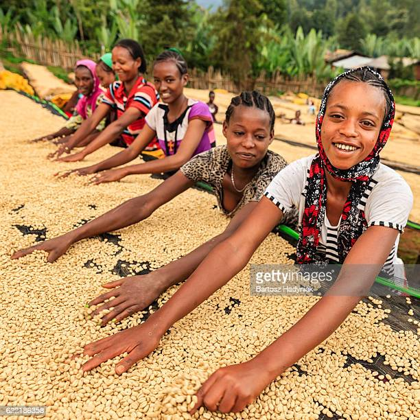 African girls and women sorting coffee beans, East Africa