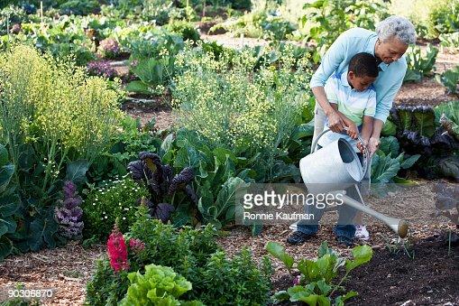 African grandmother gardening with grandson : Foto de stock