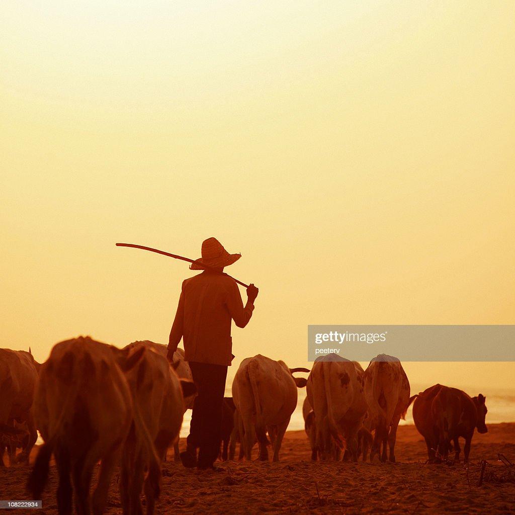 african herdsman : Stock Photo