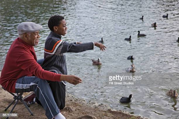 African man and grandson feeding ducks in park