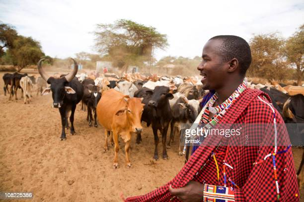 African Masai Man Smiling in Front of Cattle Herd, Kenya.