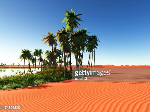African oasis : Stock Photo