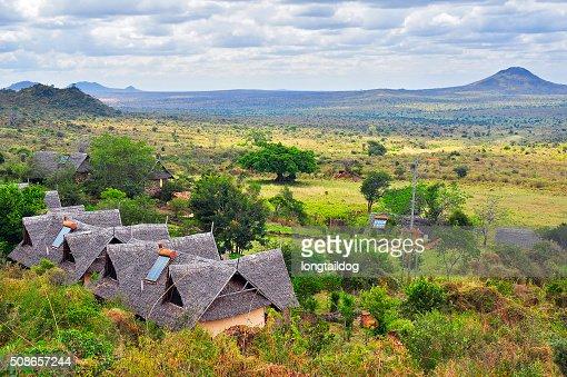 African safari in savannah : Stock Photo