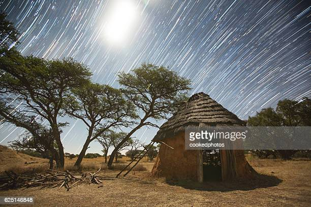 African Starry Night