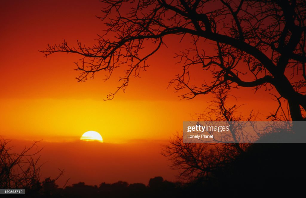 African sunset in the Kruger National Park. : Stock Photo