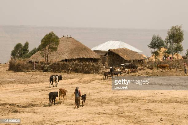 African way of farming in Ethiopia