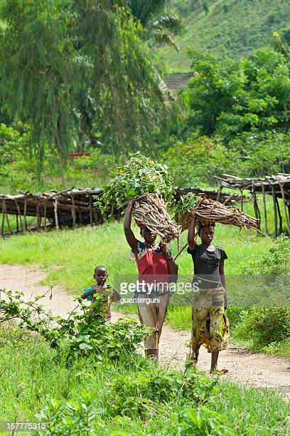 African women are carrying firewood, Lake Tanganyika, Burundi, Africa