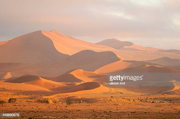Afrika Namibia NaukluftNationalpark Wüstenlandschaft