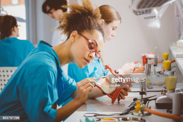 Afro american female students learning dentistry