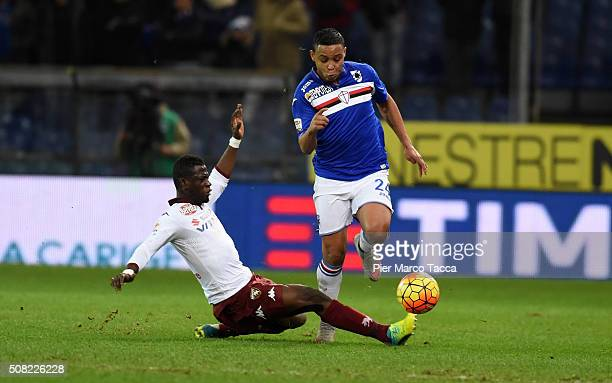 Afryie Acquah of Torino FC competes for the ball with Luis Muriel of UC Sampdoria during the Serie A match between UC Sampdoria and Torino FC at...