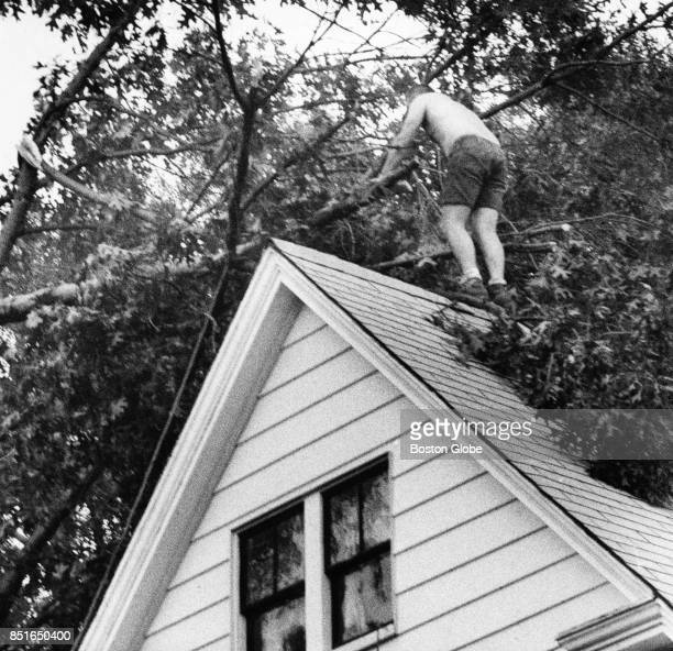 After a tornado Bob Pintal removes fallen tree branches from the roof of his brotherinlaw's house on Washington Street in Chelmsford Mass on July 21...