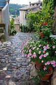 Cobblestone road after the rain in the village of Biot, Cote d'Azur
