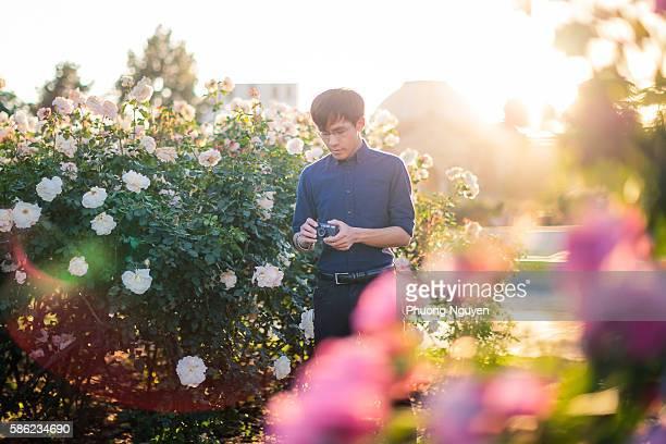 Afternoon Rose Garden