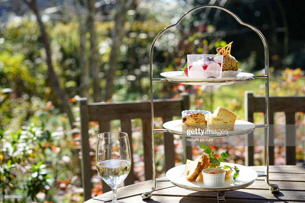 http://media.gettyimages.com/photos/afternoon-tea-in-terrace-seat-picture-id880706032?k=11&m=880706032&r=1&s=1024x1024&w=0&h=JlKFZWfXSP2SwgYDr952qu1u6l7pID-tfz50DjM28Zc%3D