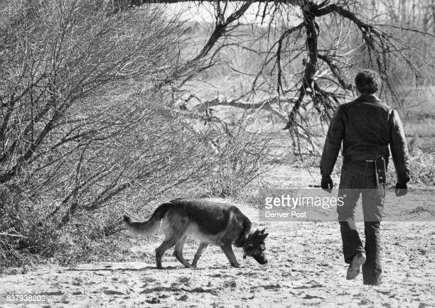Agent And Dog Search For Dynamite An FBI agent accompanied by dog trained to sniff out explosives explores the dry bed of Cherry Creek Reservoir...