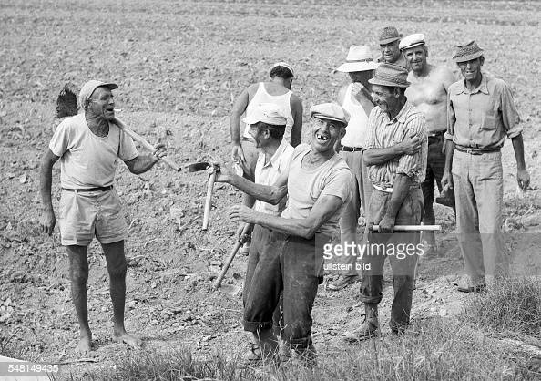 agrarian economy field work farm workers in the Huerta in the province of Valencia take a midday break aged 40 to 60 years Spain Valencia