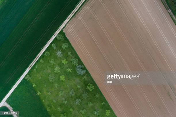 Agricultural area - aerial view