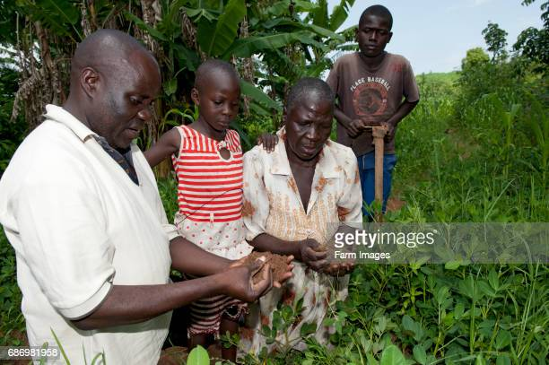 Agricultural expert showing family how to grow good quality crops Kenya