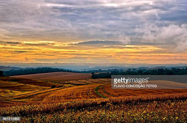 Agricultural fields farms Brazil