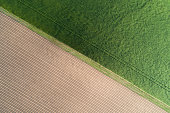 Agricultural fields from above. Half green and half plowed fields aerial view. Agricultural backdrop with copy space.