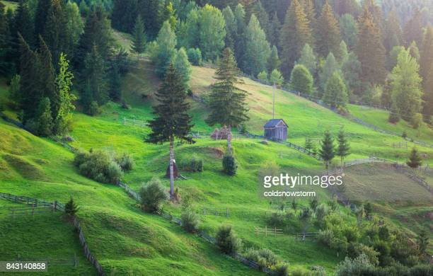 Agricultural green landscape at twilight in Borsa, Maramures, Romania
