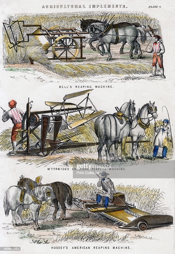 agriculture in 19th century essay In the years from the end of the civil war in 1865 and the turn of the century  of agriculture and its problems  the gilded age also witnessed.